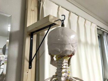 吊り下げ型骨格模型